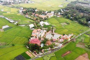 Thu hồi toàn bộ đất mua bán vi phạm của sư Thích Thanh Toàn quanh chùa Nga Hoàng