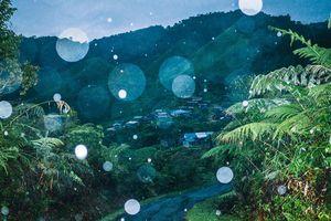 Triển lãm ảnh đương đại Đông Nam Á ra mắt công chúng Thủ đô