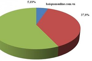 Hơn 9 triệu tờ khai hải quan, chỉ có gần 5,2% luồng Đỏ