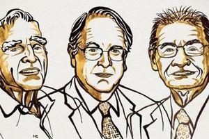 Nobel Hóa học 2019 vinh danh công trình phát triển pin lithium-ion