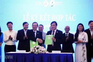 Doanh nhân TP.HCM và doanh nhân kiều bào hợp tác cùng phát triển