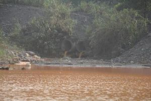 Khẩn trương kiểm tra, khắc phục hiện tượng nước ô nhiễm chảy ra vịnh Hạ Long