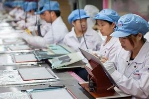 Từ tháng 11, người lao động được vay tối đa 100 triệu đồng vốn hỗ trợ tạo việc làm