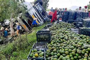 Xe tải chở trái cây lật úp, dân Quảng Ngãi nhặt giúp tài xế