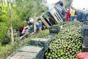 Người dân thu gom trái cây giúp tài xế khi xe tải bị lật ở quốc lộ
