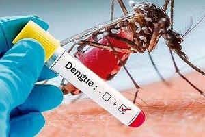 Chưa hết lo với dịch sốt xuất huyết