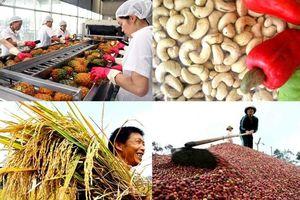 Việt Nam xuất siêu hơn 7 tỷ USD