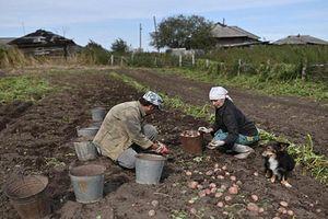 Ngạc nhiên cuộc sống trong ngôi làng hẻo lánh ở Nga