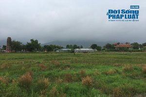 Giá đất xung quanh 'trang trại 300 tỷ' của sư thầy Thích Thanh Toàn có đắt không?