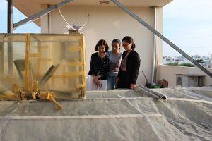 Đà Nẵng: Cô gái trẻ thành công với mô hình nuôi trồng tảo khép kín