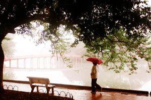 Miền Bắc mưa rét, mùa đông năm nay mưa nhiều hơn