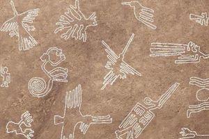 Loạt nét vẽ cổ đại trên đất nghìn năm không mờ ở Peru