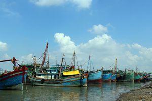 'Phạt nguội' hàng chục tàu cá đánh bắt trái phép