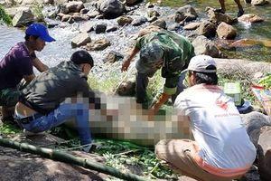 Quảng Bình: Hoảng hồn phát hiện thi thể không có áo nổi trên suối Khe Mét
