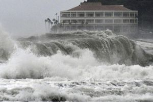 Siêu bão Hagibis đánh chìm tàu Panama, 2 người Việt Nam mất tích