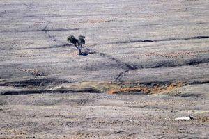 Úc đầu tư 680 triệu USD vào đập cho vùng bị hạn hán