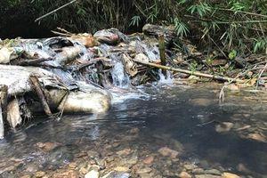 Cơ quan chức năng tiến hành kiểm tra, lấy mẫu nước tại đầu nguồn Nhà máy nước sông Đà