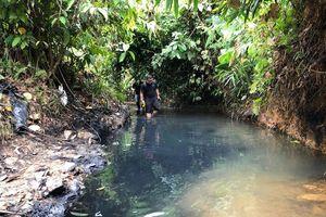 Cận cảnh dòng suối nhiễm dầu gây ô nhiễm nước ở Hà Nội