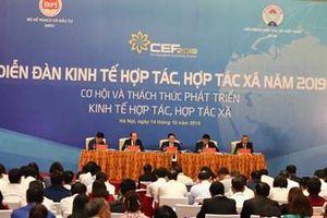 Cơ hội và thách thức phát triển kinh tế hợp tác, hợp tác xã