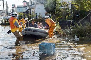 Thủ tướng Nhật Bản chỉ đạo huy động tối đa hỗ trợ người dân do siêu bão Hagibis