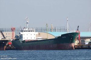 1 thủy thủ Việt trong vụ đắm tàu bão Hagibis đã được cứu sống