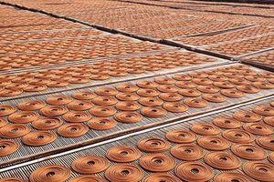 Việt Nam đề nghị Ấn Độ nhập khẩu 300 container hương nhang