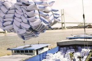 Gạo Việt Nam rộng cửa vào Philippines