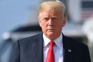Tổng thống Trump kêu gọi lệnh ngừng bắn tại Syria