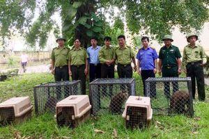 Vườn quốc gia Vũ Quang: Gìn giữ sự đa dạng sinh học