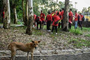 Báo Trung Quốc: 'SVĐ ở Philippines không khác gì sở thú'
