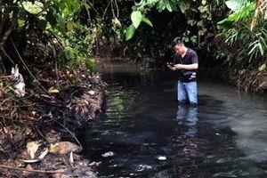 Thủ tướng giao Bộ Công an điều tra vụ cấp nước ô nhiễm cho dân Hà Nội