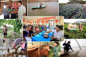 Phát triển kinh tế hợp tác, hợp tác xã: Cơ hội và thách thức