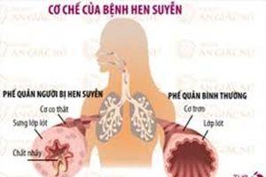 Bài 2: Dứt bệnh hen suyễn bằng bài thuốc nam đơn giản
