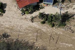Nhật Bản: Hơn 60 người thiệt mạng vì bão