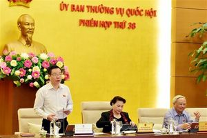 Phiên họp 38 của Ủy ban TVQH: Tình trạng xâm hại trẻ em đã đến mức báo động