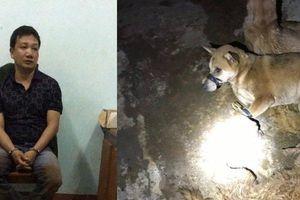 Truy đuổi 2 kẻ trộm chó xịt hơi cay, chống trả cảnh sát giao thông