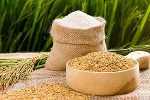 Giá lúa gạo ở ĐBSCL thấp nhất 12 năm qua