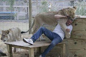 Khiếp đảm với những vật nuôi nguy hiểm nhất thế giới
