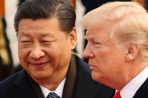 Chuyên gia Nga đoán gì về lời ca ngợi Trung Quốc của Donald Trump?