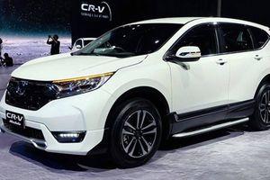 Honda Việt Nam mang dàn ô tô thể thao tới VMS 2019