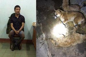 Kẻ trộm chó dùng bình xịt hơi cay, ném đá chống trả CSGT để tẩu thoát