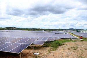 Đánh thức tiềm năng từ dự án điện mặt trời Cư Jút Đắk Nông