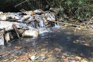Thủ tướng chỉ đạo Bộ Công an điều tra vụ ô nhiễm nguồn nước sạch sông Đà