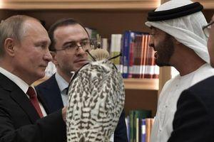 Ông Putin tặng thái tử UAE loài chim ưng tặng vua Saudi Arabia