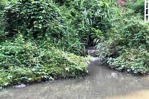 Vụ nước sạch sông Đà bị nhiễm dầu: Điều khó tránh khỏi