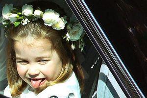 18 khoảnh khắc chứng minh Công chúa Charlotte cũng tinh nghịch đáng yêu như bao bé gái 4 tuổi khác