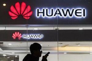 Bất chấp áp lực từ Mỹ, Đức vẫn cho phép Huawei tham gia mạng 5G