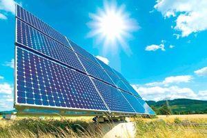 Phương án giá mua điện mặt trời: 'Loạn xạ' phương án tham mưu
