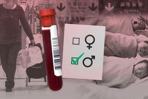Vận chuyển máu lậu ở Trung Quốc: Vì sao thai phụ phá luật để biết trước giới tính thai nhi?