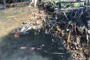 Vụ nước sạch sông Đà nhiễm dầu: Khởi tố vụ án hình sự